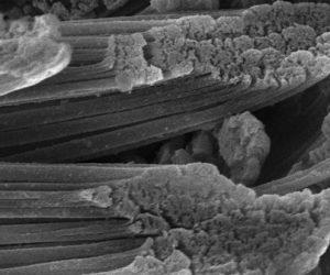 Matériaux programmables : le potentiel des polymères
