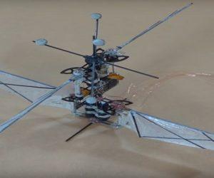 Un robot colibri aussi agile que le vrai