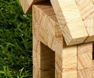 La nanostructure du bois vivant enfin révélée : vers des superstructures en bois ?