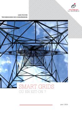 Les Smart grids en 2019 : où en est-on ? / Livre blanc
