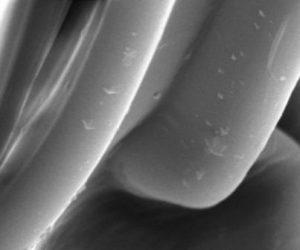 Polymères : les dernières innovations