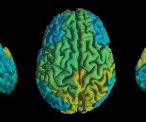 Cartographier les lipides du cerveau une nouvelle méthode d'IRM quantitative
