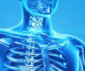 Des revêtements en verre bioactifs pour la fabrication d'implants osseux