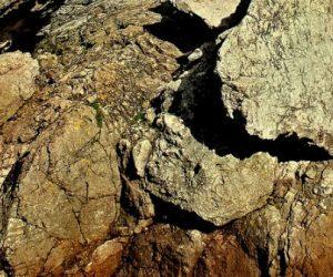 Les microplastiques doublent tous les 15 ans dans les sédiments de Santa Barbara