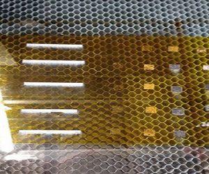 Un filtre en graphène pour éliminer les bactéries présentes dans l'air