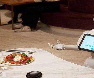 Les robots de service peinent à s'imposer