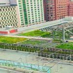 L'agriculture urbaine ou l'implication des citoyens dans leur lieu de vie