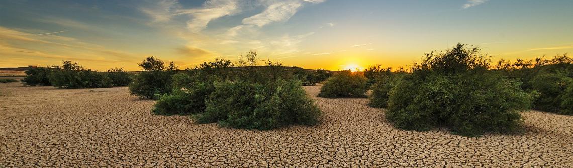 Le réchauffement climatique menace la France