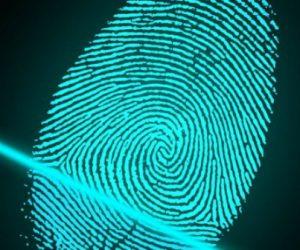 Entre Etat et industriels, difficiles discussions sur l'identité numérique