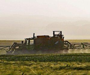 Deux startups innovent pour une agriculture durable et sans produit phytosanitaire