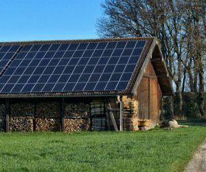 Le photovoltaïque s'invite dans le monde agricole