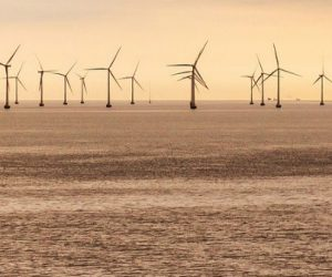 Offshore éolien : l'effet de sillage obligera à une planification transfrontalière