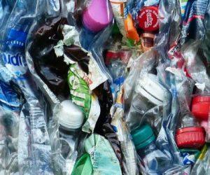 L'évaluation de la biodégradabilité des plastiques : un défi !