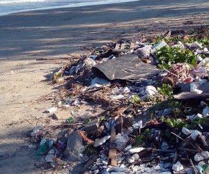 Lumière sur la biodégradabilité du plastique en mer