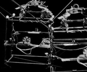 Ce robot peut suivre l'évolution d'un insecte en vol