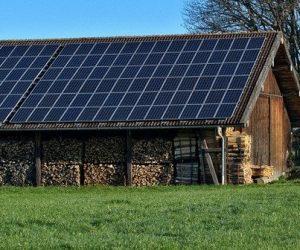 Pour le solaire agricole, l'OPECST mise sur l'agrivoltaïsme