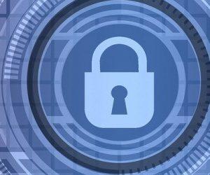 À la chasse aux failles informatiques : le bug bounty expliqué