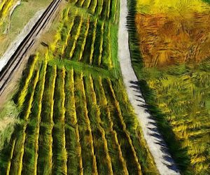 Agriculture numérique : la protection des données en question