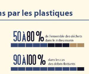 Infographie : pollution plastique des océans, un changement de paradigme s'impose