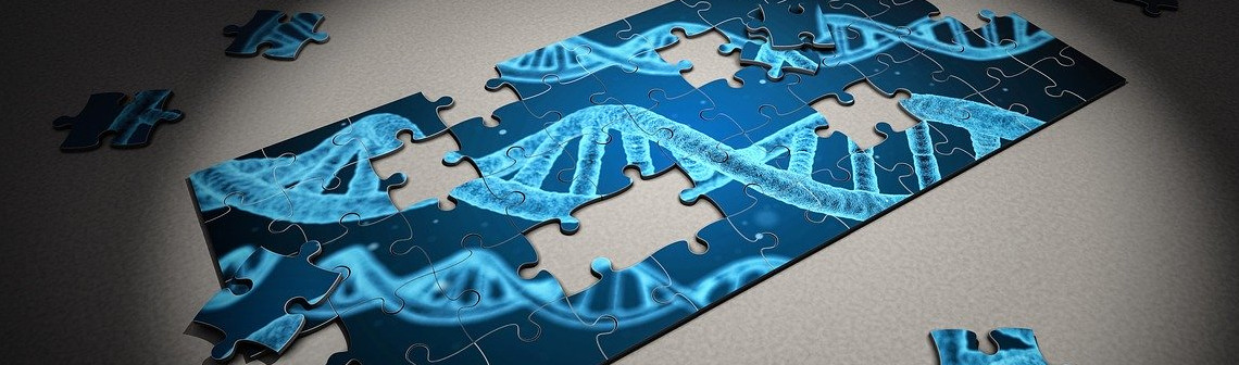Le séquençage de l'ADN : peut-il servir aux pirates informatiques ?