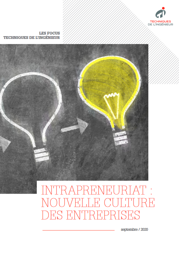 Intrapreneuriat : l'innovation au prisme de la culture des entreprises