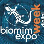 Le biomimétisme, l'évolution continue