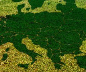 Sept pays menacent les objectifs climatiques de l'UE