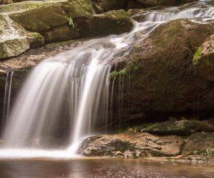 Recycler les eaux usées traitées, une alternative face à la raréfaction de cette ressource