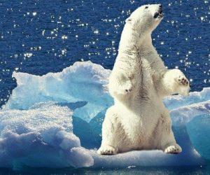 Réchauffement climatique : le seuil des +1,5°C pourrait être franchi entre 2027 et 2042