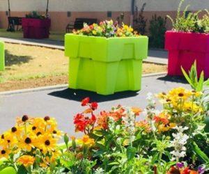 « Nos bacs autonomes permettent à l'utilisateur de s'affranchir des contraintes du jardinage »