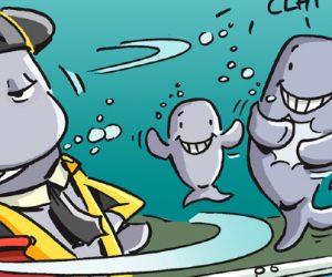 En image : Les cachalots ont appris à éviter les harpons au 19e siècle