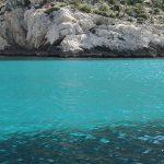 Le label bas-carbone pour préserver les herbiers marins des Calanques