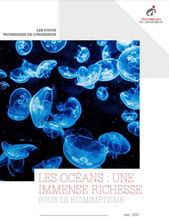 Les océans : une immense richesse pour le biomimétisme