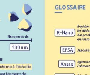 Infographie : Nanomatériaux dans les aliments - Comment contrôler leur innocuité et protéger le consommateur ?