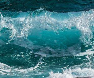 Flotteurs Argo, de la surface à la profondeur