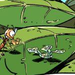 En image : la plus petite machine volante prête pour le service !