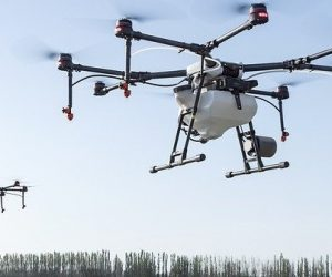 Faire voler des mini-drones, bientôt une réalité ?