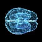 Pourquoi le cerveau se souvient-il des rêves?