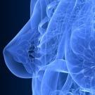 Ces substances du quotidien favorisent le cancer du sein