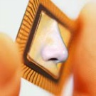 Nanobiosenseurs, les nez électroniques de dernière génération