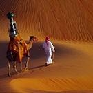 Google Street View s'invite sur un chameau