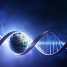 De l'ADN a survécu à un voyage dans l'espace
