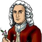 Carl Von Linné, la personnalité historique la plus importante ?