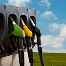 Total se détourne du raffinage au profit des biocarburants