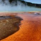 Les réactions chimiques à l'origine de la vie (peut-être)