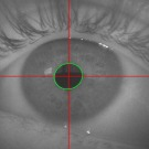 """DMLA : Light Vision développe une paire de lunettes """"intelligente"""""""
