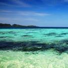 Evaluation de la technologie de séquestration du carbone en milieu marin