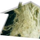 Forte présence de substances chimiques dans l'air des logements