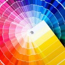 Comment notre cerveau se souvient-il des couleurs ?