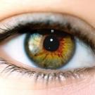 Comment notre cerveau nous permet d'y voir clair